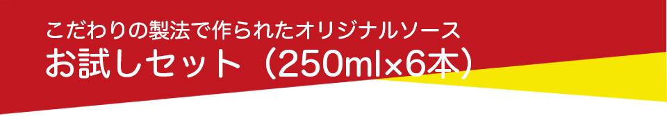 お試しセット(250ml×6本)
